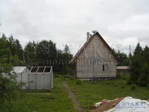 Продажа участка, Ивангород, Кингисеппский район, 1 линия