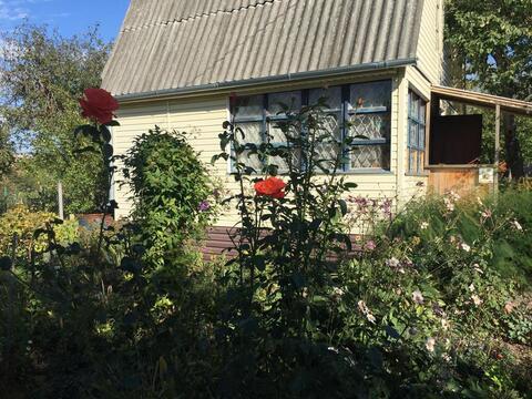 Продается дача. , Коломна город, садоводческое некоммерческое .
