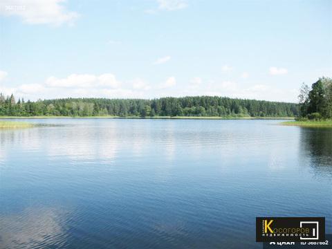 Купи сруб из бревна С участком на озере селигер