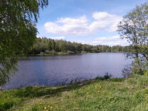 рыбалка с костюнино щелковский