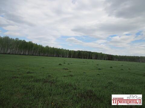 Земельный участок 9.4 гектар в экологически чистом районе