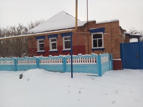 Аренда дома, Дмитриевка, Ракитянский район