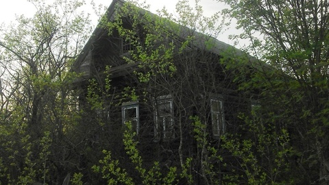 Дом в деревне под прописку или дачу