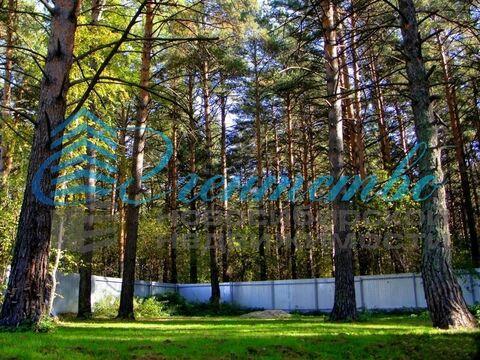 Продажа участка, Кубовая, Новосибирский район, Зелёная