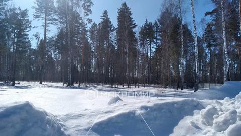 Продажа участка, Сосновка, Новосибирский район, Ул. Центральная