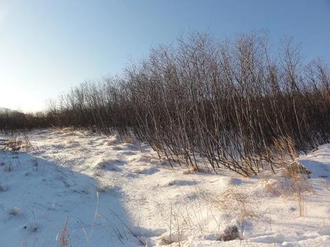 Продам земельный участок под ИЖС на Дукчинском шоссе ( Горняк) 1500 м.