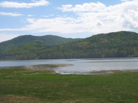 Великолепное место для отдыха и уединения с природой. Большая Речка.