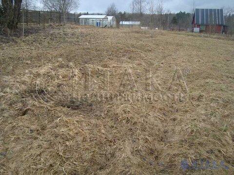 Продажа участка, Светогорск, Выборгский район, Правобережное СНТ