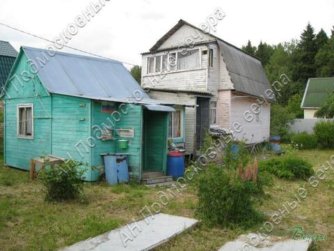 Новорижское ш. 55 км от МКАД, Анашкино, Участок 8 сот.