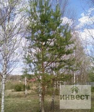 Продается земельный участок 9 соток, д.Купелицы, СНТ Купелицы