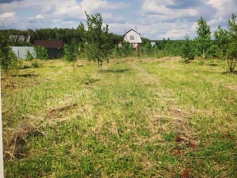 Чистый зелёный район. Вокруг лесной массив, рядом несколько прудов, р.