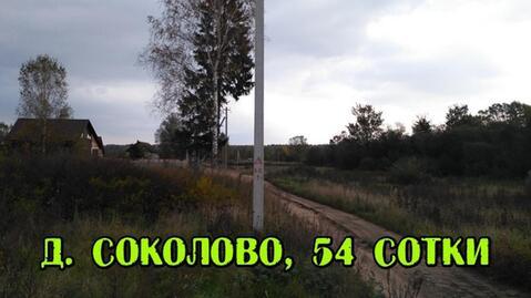 Участок 54 сотки в д. Соколово, с коммуникациями