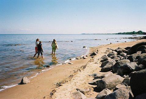 Участок у Чудского озера(100 м)