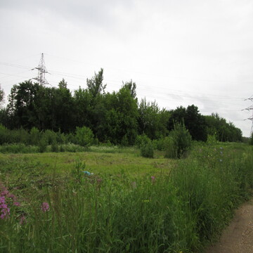 Земельный участок 21 сотка, дмитровский район, д. Кузяево.