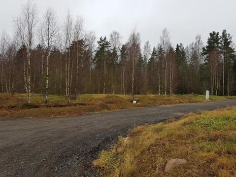 Земельный участок со всеми коммуникациями в жкп Смольный 18 км от КАД