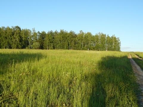 Деревня Митино участок 12,4 гектара Заокский район Тульская область