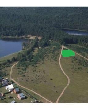 Земля в сосновом лесу на оз.Селигер д.Слобода