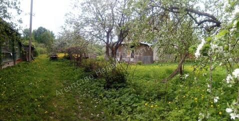 Продажа дома, Теребеник, Батецкий район, Теребеник