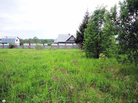 Участок 24 сот, Новорижское ш, 55 км. от МКАД, Каринское. Ровный, .