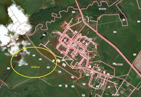 Продаётся 4 уч-ка сельхозназначения площ. 19,5 га вблизи д.Малое Васил