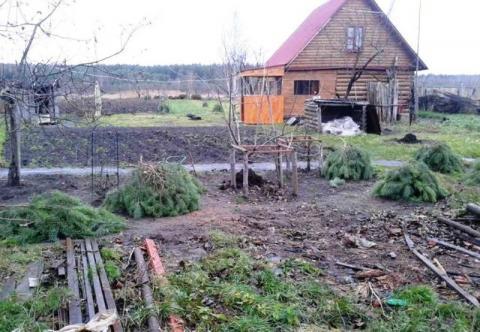 Дом в д.Аверькиево, Клепиковского района, Рязанской области.