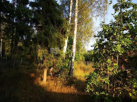 Участок 13 сот. , Можайское ш, 56 км. от МКАД.