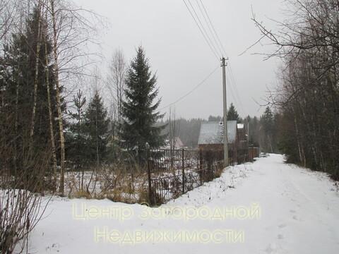 Участок, Ярославское ш, Дмитровское ш, 50 км от МКАД, Луговая д. .