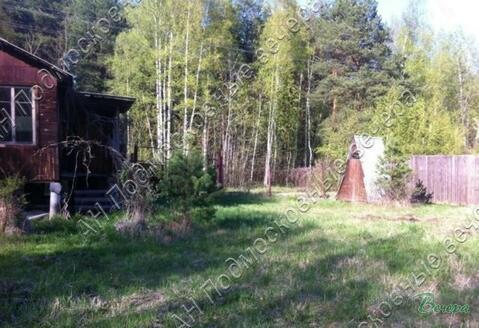 Горьковское ш. 35 км от МКАД, Стулово, Участок 8 сот.