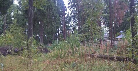 Лесной участок в элитном жилом поселке на Рублевке