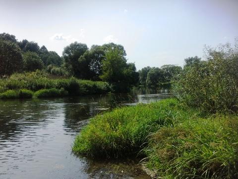 Деревня тихое место лес, пруд рядом