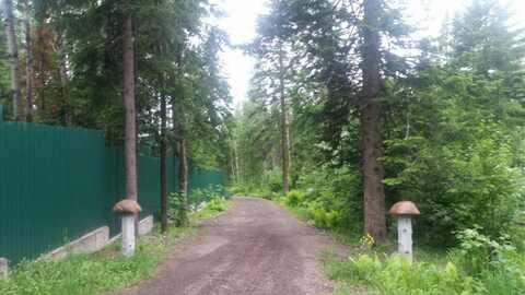 Земельный участок д.Тебеньковка супер красивое место 550тыс