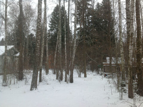 Рублево-Успенское ш. ДПК «Назарьево» лесной участок 28.7 соток