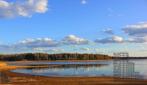 Участок 880 соток на первой линии Истринского водохранилища в лесу