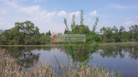 высокие деревня озерно тульская губерня объявления Томске помогут