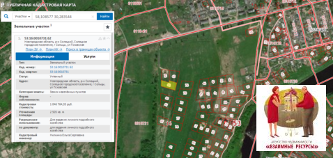 Продам два участка по 24 сотки в черте г. Сольцы Новгородской области