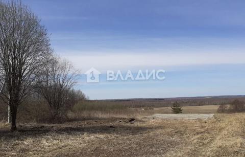 Богородский район, село Афанасьево, Луговая улица, земля на продажу