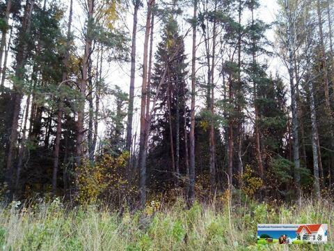 Лесной земельный участок 27 Га.