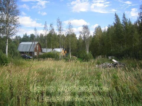 Участок, Ярославское ш, 45 км от МКАД, Федоровское д. (Пушкинский .