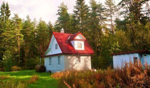 Продажа дома, Цвелодубово, Выборгский район