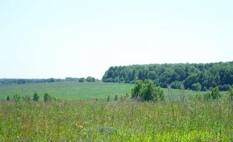 Участок 30 соток в деревне Юрлово.