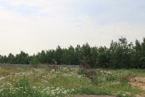 Участок 1,5 га на Новорижском ш. 10 км от МКАД с коммуникациями дешево