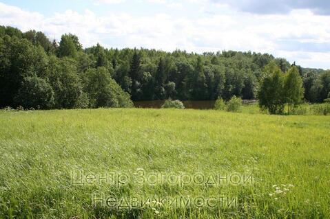 Участок, Новорижское ш, 200 км от МКАД, Зубцов. Новорижское ш. 200 км .
