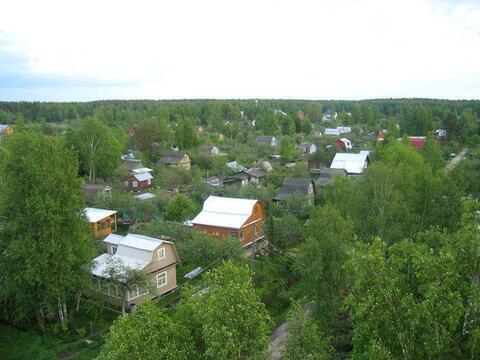 Земельный участок 8 соток расположенный по адресу: п. Киевский, СНТ