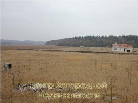 Участок, Можайское ш, 65 км от МКАД, Васильевское д. (Рузский р-н). .