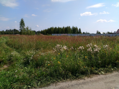 Судогодский р-он, Головино п, земля на продажу