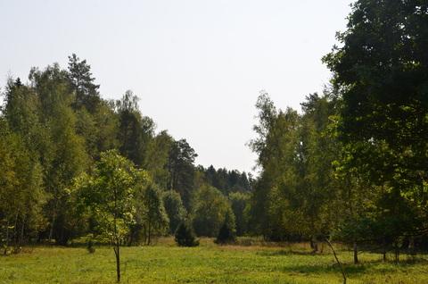 Симферопольское ш, 55 км . Продажа участка на опушке леса, 24 сотки
