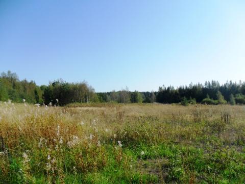 Участок 8 га на первой линии в Питкярантском р-н республики Карелия