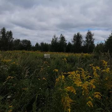 Участок 10.0 сот. , Ильинское ш, 25 км. от МКАД.