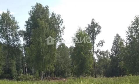 Суздальский район, посёлок Садовый, Виноградная улица, земля на .