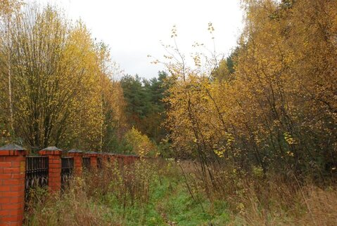 Участок 15 сот. , Егорьевское ш, 20 км. от МКАД. Деревня Капустино